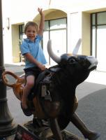 bull-rider_v_july-08.jpg