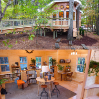 The Library Treehouse Every Backyard Should Have